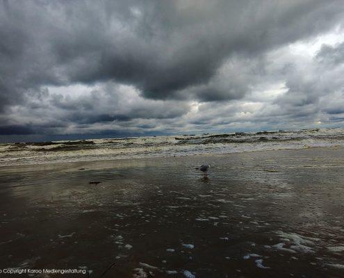 Karoo Mediengestaltung Fotografie Objekt / Natur